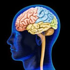 Tout d'abord santé mentale, la vitamine B12
